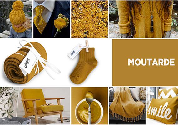 Moutarde - chaussettes et collants